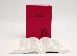 Újonnan Revideált Károli Biblia-Középméretű/ciklámen