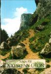 A keskeny úton - Sükös Pál