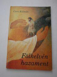 Fölkelvén hazament - Cseri Kálmán